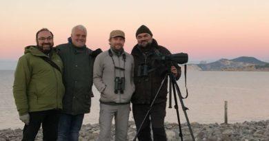 Rarebirds Swarovski Optik Birdracing Team participarà en el Global Big Day 2018